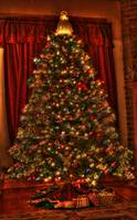 Christmas Tree (IMG_6603+) by Jeff VanDyke