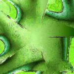 """Green Star"" by deedemigjorn"