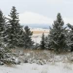 """""""Winter Home"""" by artfilmusic"""