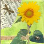 """Sunflower and Dragonfly Collage"" by quirkycreations"