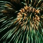 """""""Fireworks5"""" by MaesGarden"""