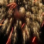 """""""Fireworks8"""" by MaesGarden"""