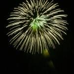 """""""Fireworks9"""" by MaesGarden"""