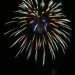 """""""Fireworks15"""" by MaesGarden"""