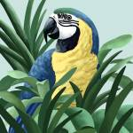 """Blue and Gold Macaw Art"" by waterart"