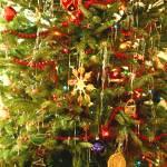"""Oh Christmas Tree"" by rayjacque"