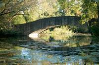 Tenney Park Bridge 2