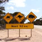 """Nullarbor Road Signs"" by jiva"