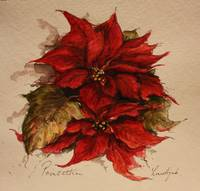 'Poinsettias'