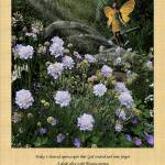 """""""Morning Prayer Poster"""" by NaturePlusStudios"""