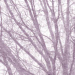 """12-31-2008XE"" by WalterPaulBebirian"