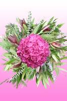 Flower Mandala: Pink Victory Wreath