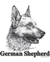 Mac's Drawing/German Shepherd