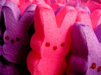 Pink and Puple Bunny Peeps