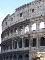 Coloseum Profile