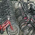"""bike stand"" by BevMummery"