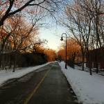 """01.02.09 - the road - somerville, ma"" by tessarh"