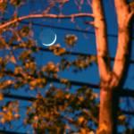 "new moon" by artfilmusic