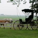 """Iowa farm"" by NancyPants"