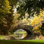 """Bridge in Central Park"" by MattParry"