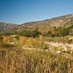 """""""Santa Paula Creek"""" by jrphotos"""