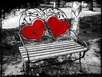 Lover's Bench