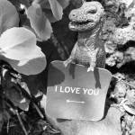 """I Love You Dino"" by evansphotography"