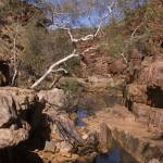 """Red Centre water hole"" by daveoh"