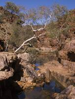 Red Centre water hole