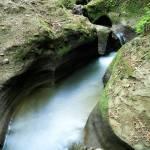 """Small Creek"" by billburk"