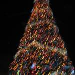 """X-mas tree"" by johnvanerem"