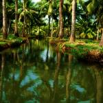 """Munroe island (Kerala, India)"" by hg2008"