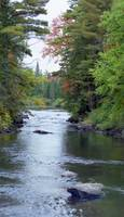 River in Algonquin