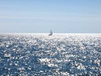 Sailing in a glistening lake in summer