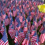 """American Flag War Memorial with Yellow Ribbon"" by Philippa"