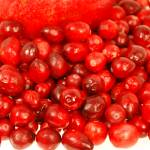 """cranberries"" by lwoodburn"