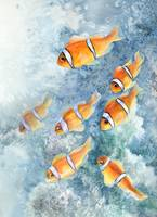clownfish school's out