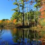 """Autumn Reflections"" by michellekelley"