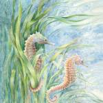 """seahorses"" by LisaMclaughlin"