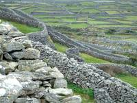 Fields of Aran Island