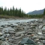 """Riley Creek, Denali"" by Mick553"