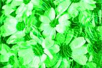 Green Floral Abstract