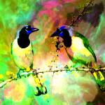"""Cosmic love birds by Donovan"" by Donovan2012"