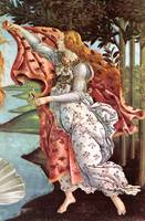 Birth of  the Venus, detail 4