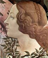 birth of the Venus, detail2