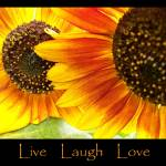 """Live Laugh Love Sunflowers"" by crazysuncompany"