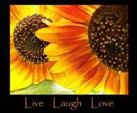 Live Laugh Love Sunflowers