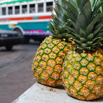 """Pineapples and a Bus"" by jcarillet"