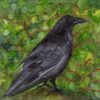Raven in Wirevine