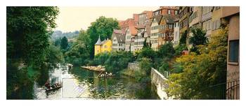 Sycamore  avenue ¦ river Neckar ¦ hand skippered b